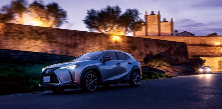 The All New 2019 Lexus UX Launched 9
