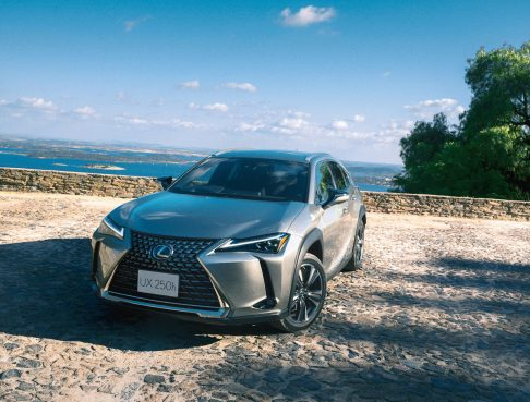 The All New 2019 Lexus UX Launched 4