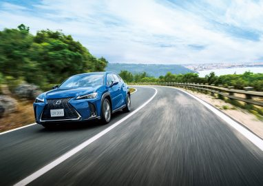 The All New 2019 Lexus UX Launched 7