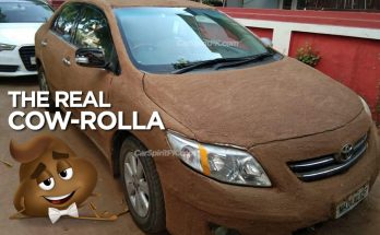The Toyota Corolla Coated with Cow Poop 13
