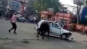 Angry Bull Didn't Liked Suzuki Alto 5