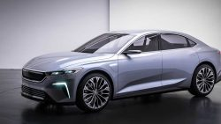 Turkey's TOGG Signs Deal with China's Farasis for EV Batteries 5