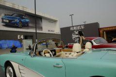Songsan Dolphin- The Chevrolet Corvette Knockoff 13