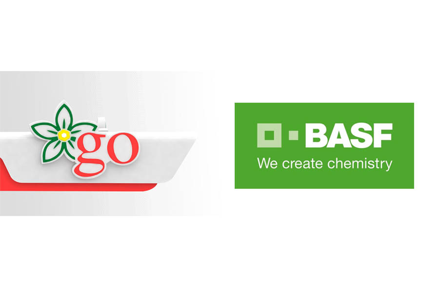 BASF and GO Pakistan Sign MoU for Research-based Collaboration for Automotive Industry 1
